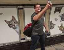 Estação de metrô em Londres amanhece repleta de fotos de gatinhos