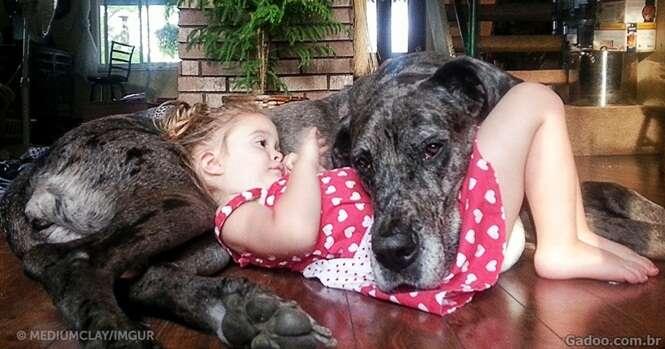 Imagens ultra fofas provam que os cães são realmente os melhores amigos dos seres humanos