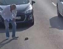 Este homem parou uma via de uma movimentada rodovia para salvar um gatinho da morte