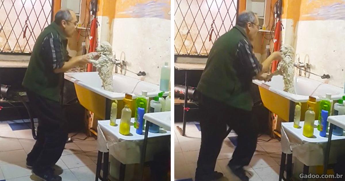 """Esse homem não apenas dá banho em cães, mas também dança com seus """"clientes"""""""