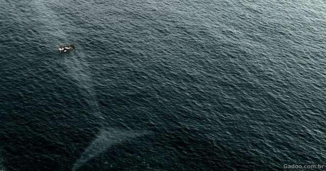 Imagens que vão fazer você ter pavor de entrar na água