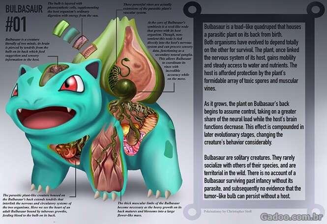 Como seria a anotomia dos Pokémons?