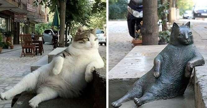 Gato mais famoso de Istambul é honrado com estátua própria em seu lugar favorito