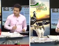 Vídeo: gatinho de rua surge inesperadamente e interrompe programa ao vivo