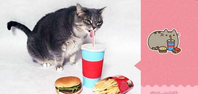 Homem recria emoji felino do Facebook com seu gato e resultado é sensacional