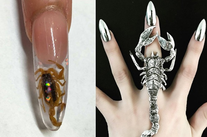 Moda diferente: pequenos escorpiões de verdade nas unhas