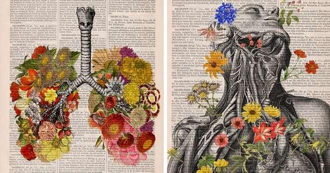 Ilustrações florais da anatomia humana dão vida a velhos livros descartados