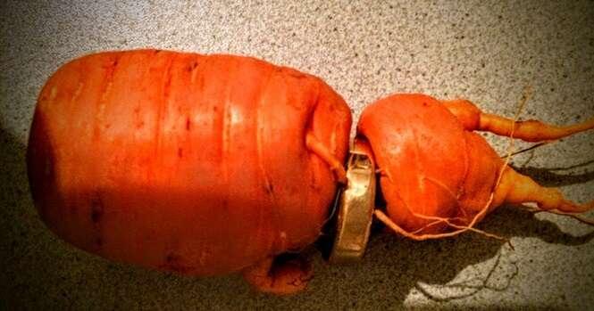 Idoso perde aliança de casamento e a encontra 3 anos depois em uma cenoura