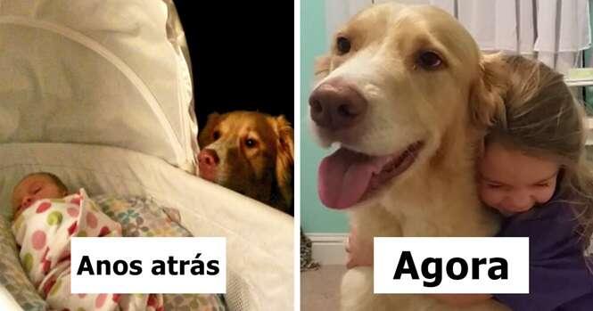 Fotos de cães e donos que cresceram juntos