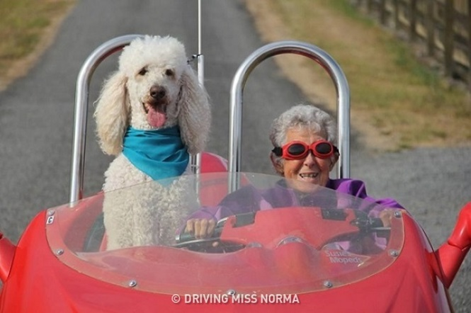 Idosa de 90 anos ignora diagnóstico de doença terminal para realizar sonho