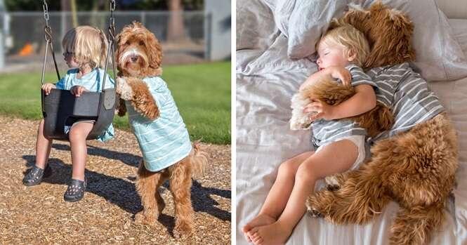 Fotos reconfortantes da amizade deste menino com seu cão