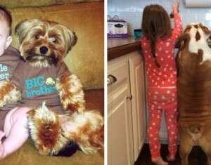 21 imagens adoráveis de cães e crianças
