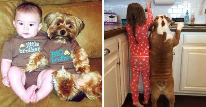 Imagens adoráveis de cães e crianças