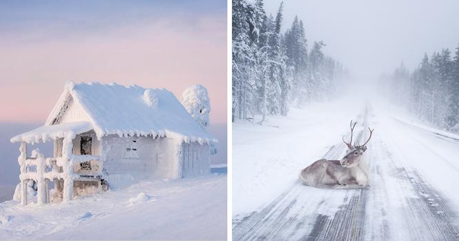 Razões pelas quais a Lapónia é o lugar mais mágico do mundo para celebrar o Natal