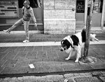 30 fotos perfeitamente cronometradas feitas nas ruas