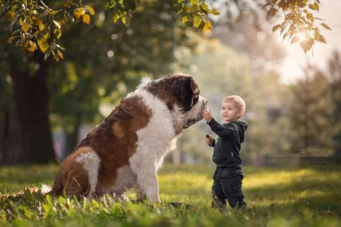 Imagens incríveis de crianças e seus cães de estimação