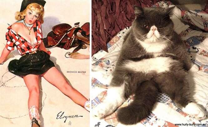 Gatos imitando modelos pin-up