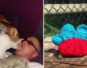 15 pessoas que tratam seus animais de estimação melhor do que a si próprias