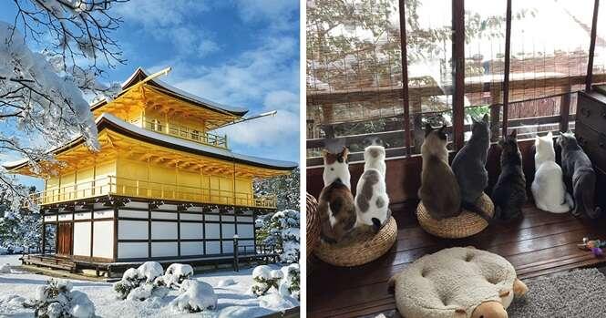 """Neva de maneira rara em Quioto, no Japão, e a cidade se transforma em um """"mundo mágico"""""""