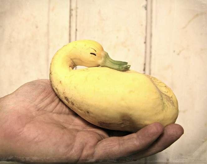 Frutas e legumes com formas estranhas