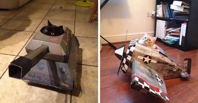 Brinquedos super divertidos para gatos