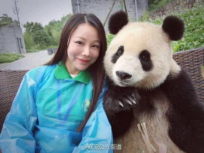 Panda conquista internet após fazer poses para selfies com turista