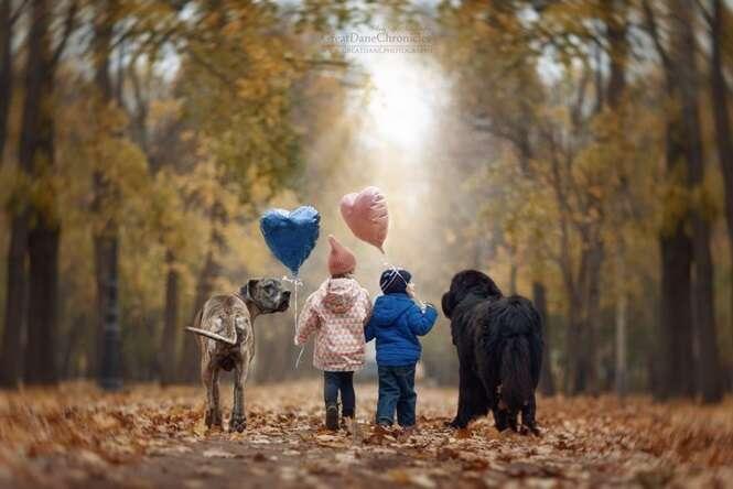 Fotos de crianças e seus cães grandes