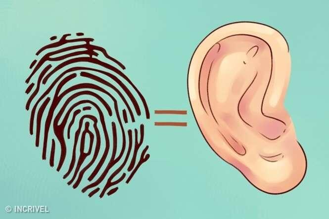 Saiba o que suas orelhas revelam sobre sua saúde