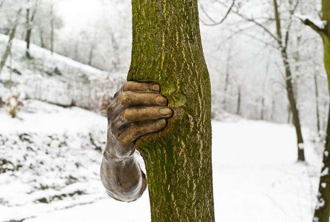 Esta escultura de bronze foi anexada a uma árvore em 1968 e é assim que ela está hoje