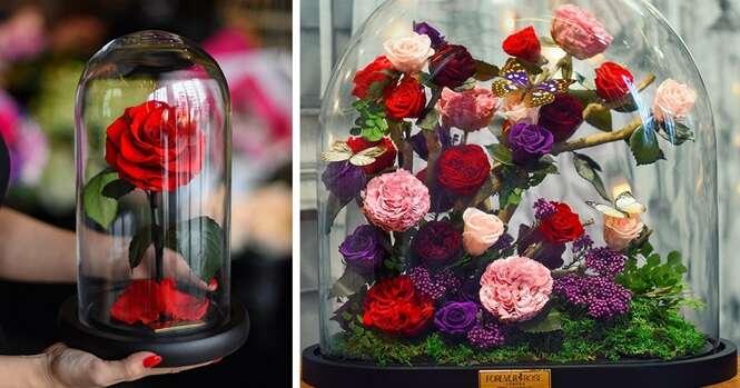 """Empresa cria rosas inspiradas em """"A Bela e a Fera"""""""