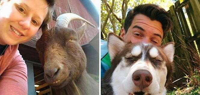 Imagens provando que suas selfies não servem para nada sem animais
