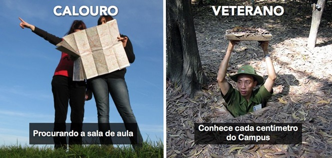 Diferenças perceptíveis entre veteranos e calouros na Universidade