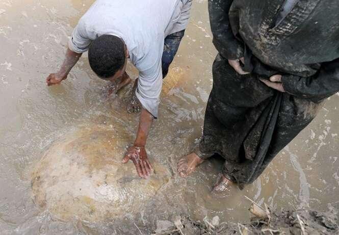 Foto: Mohamed Abd El Ghany/ Reuters