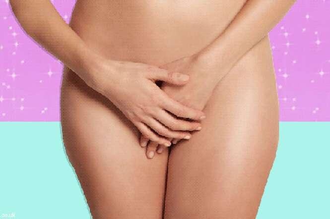 Sabia que existem 5 tipos de vaginas?