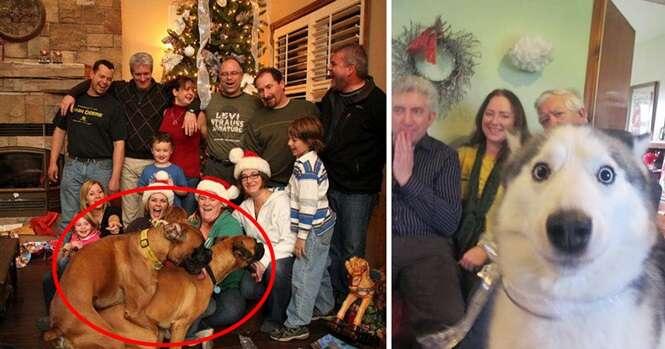 Vezes em que cães arruinaram fotos que ficariam perfeitas