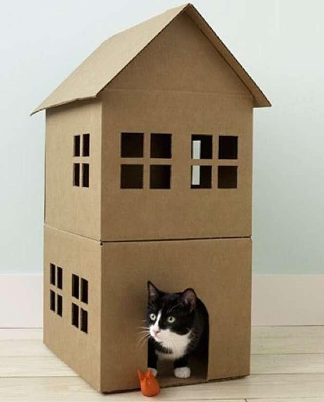 Caminhas e casinhas bem legais para cachorros e gatos