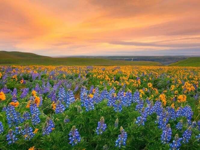 Lugares mundo afora em que a natureza não poupou cores