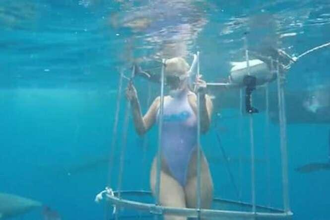 Vídeo mostra momento assustador em que atriz de filme adulto é atacada por tubarão durante ensaio fotográfico