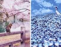 10 fotos mostrando que o Japão durante a primavera parece um conto de fadas