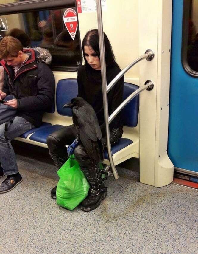 As pessoas mais estranhas já vistas usando o transporte público