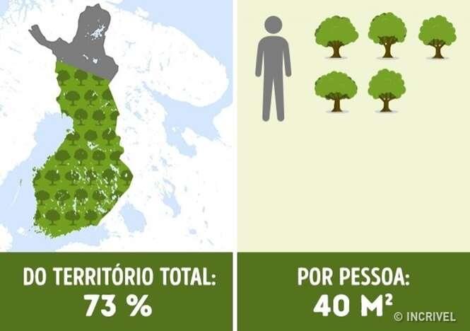 Descubra quantas árvores por pessoa existem em determinados países