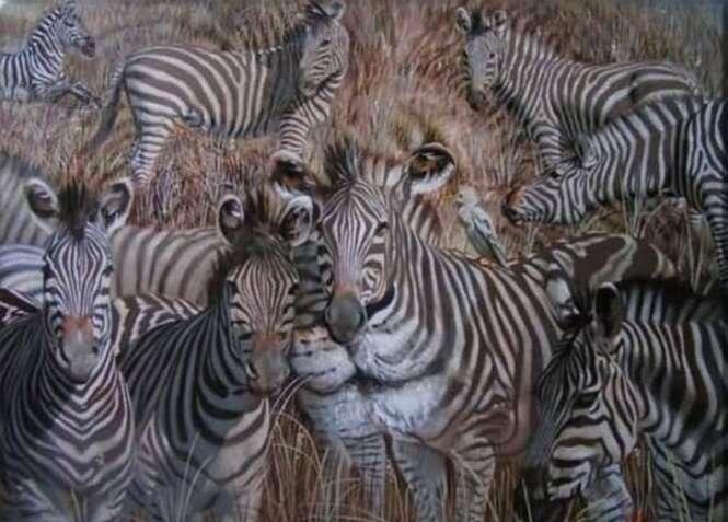 Que animal você viu primeiro? Descubra quais são seus pontos fortes e o que você precisa melhorar para alcançar o sucesso