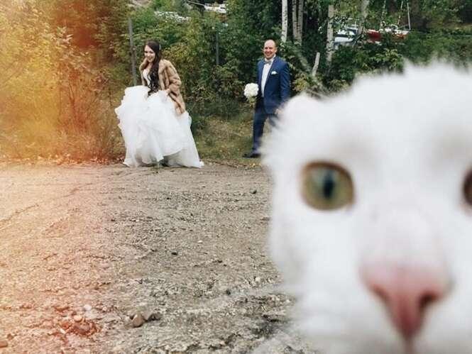 Fotos de casamento que são tudo, menos comuns