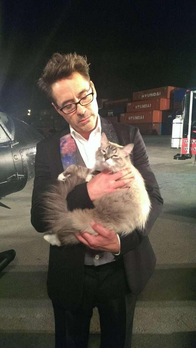 Imagens de homens famosos com seus gatos de estimação