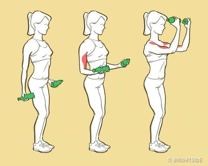 Exercícios simples para modelar os braços