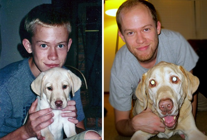 Antes e depois mostrando donos e cachorros que cresceram juntos