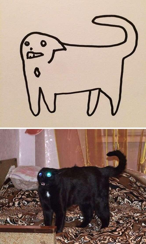 Foto:Poorly Cat Draw