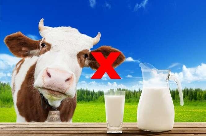 Esqueça o leite de vaca: conheça 20 ótimas fontes de cálcio que têm origem vegetal
