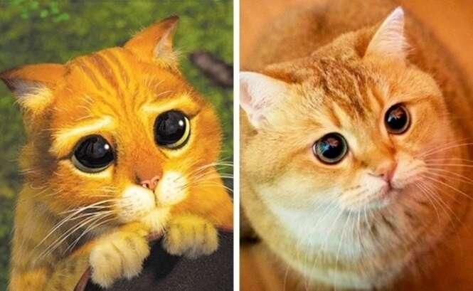 Animais parecidos demais com personagens animados