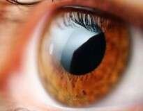 O melhor tratamento natural para recuperar a visão e proteger os olhos de doenças, segundo a ciência